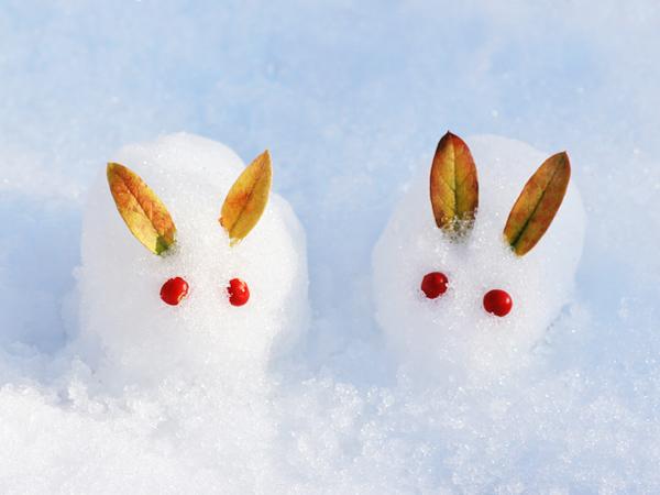雪遊びイメージ
